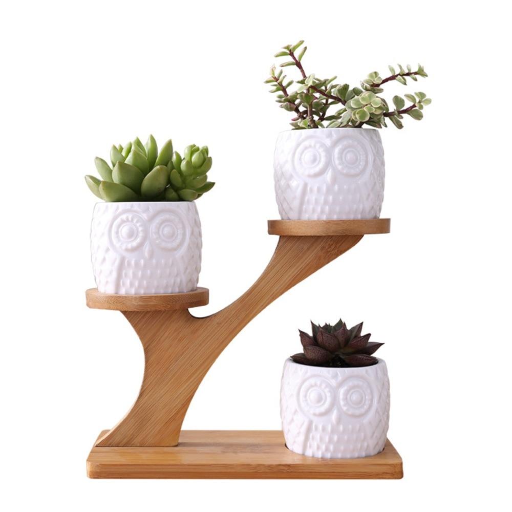 OOTDTY-وعاء زهور جميل على شكل بومة وصبار عصاري ، 3 طبقات ، زهرة ، عريشة ، مجموعة أرفف من الخيزران ، مجموعة ديكور