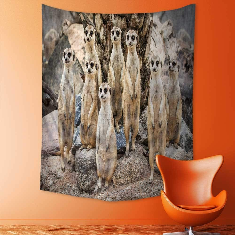 Tapisserie dart populaire de Meerkat sur le rocher   Cadre naturel, décoration pour chambre, salon, dortoir