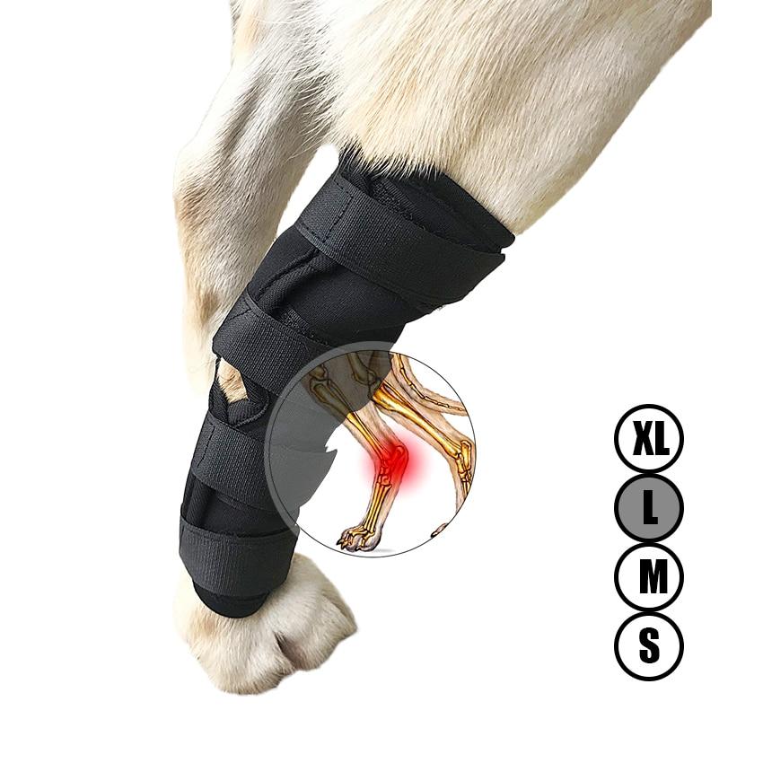 Perro canino pierna trasera rodillera envoltura de corvejón para curar y previene lesiones y esguinces ayuda con la pérdida de estabilidad (S-XL)