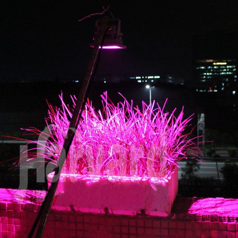 20W Solar Grow Light  Full Spectrum LED