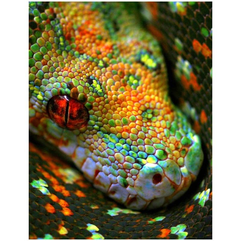 Diy diamante bordado pedrería mosaico cuadrado completo 5d animal serpiente diamante pintura punto de cruz costura CraftsZP-1619
