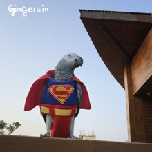 Vêtements pour oiseaux de Gingerain superman   Vêtements sur mesure et originaux, vêtements avec couches pour perroquet superman, faits à la main
