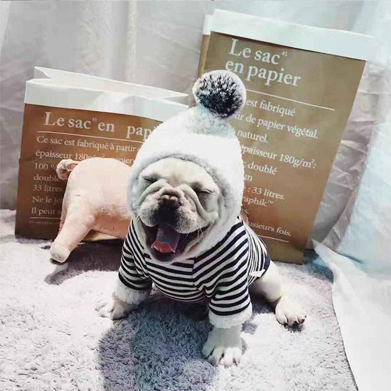 Winter Warm Hund Kleidung für Kleine Hunde Baumwolle Hoodies für Chihuahua Gestreiften Mantel für Französisch Bulldog Yorkshire Haustier Kostüm XXL