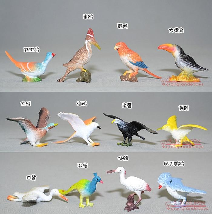 Model toy parrot hippo1 bird peacock oriole eagle 1set/12pcs