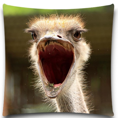 Ytoldo avestruz 2D estampado creativo funda de almohada cuadrado de algodón funda de cojín de poliéster 5 tamaño 9 estilo