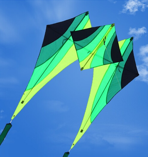 free shipping high quality new design 3d nylon kite adult flying toys with reel line wei