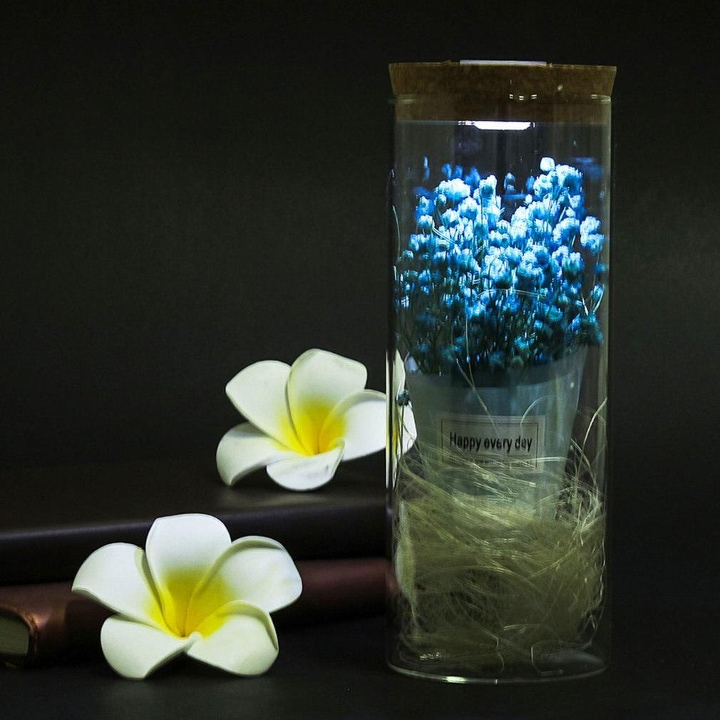 Gran oferta, florero con sello de flores, Terrario de paisaje Micro, adorno de flores secas, luz LED, decoración del hogar, regalo, triangulación de envíos