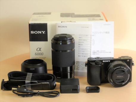 Sony ILCE-6000 A6000Y A6000 24,3 MP Digital Cuerpo de Cámara y 16-50mm...