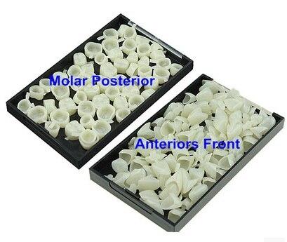 Dental Temporária Crown Folheados Material Anterior Molar Dentes Da Frente Para Trás