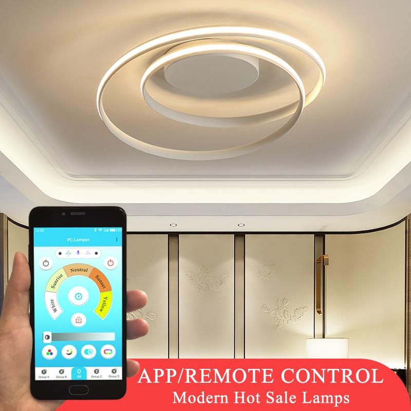 حار بيع الحديثة أضواء السقف أدى لغرفة المعيشة غرفة نوم غرفة الطعام الإنارة الأبيض والأسود السقف مصابيح تركيبات AC110V 220V