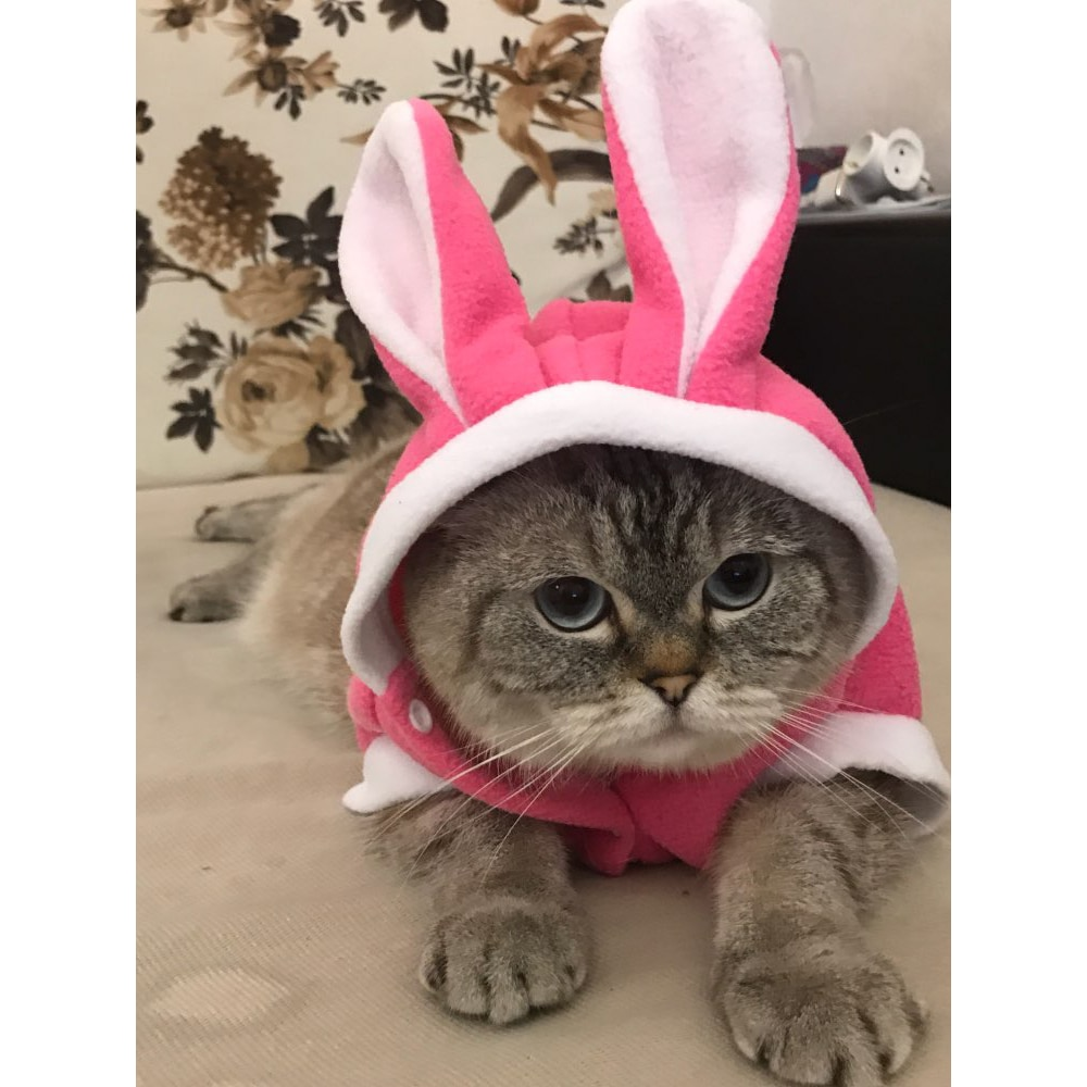 Soft Fleece Cat Costume Rabbit Suit Cute Rabbit Coat for Cat Comfortable Cat Clothes Funny Party Apparel Bunny Suit Pet Product