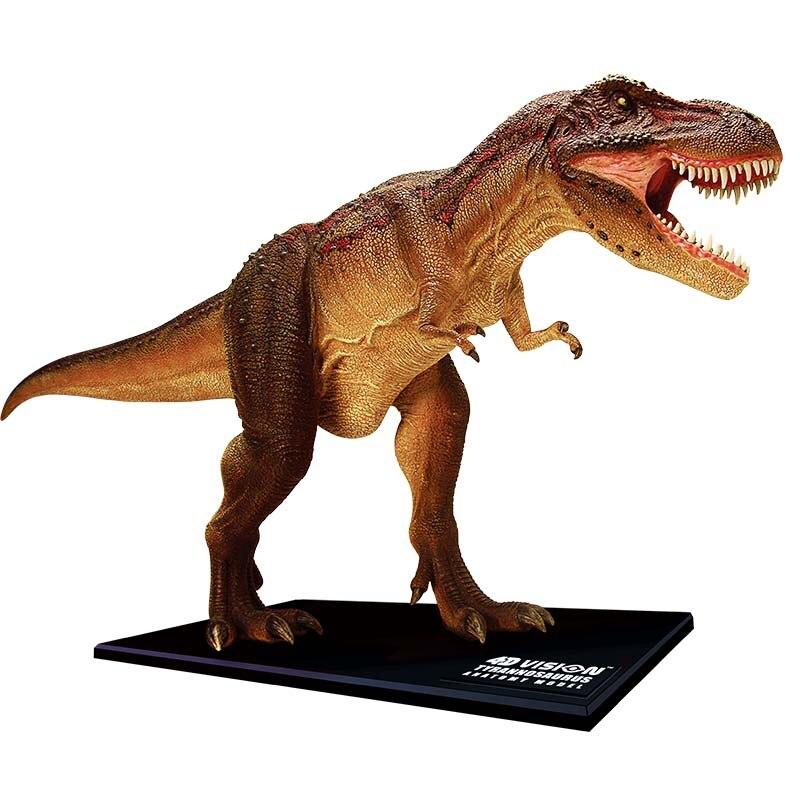 4D Big Tyrannosaurus Intelligence Assembling Toy Animal Organ Anatomy Model Medical Teaching DIY Popular Science Appliances