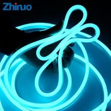 Panneau lumineux néon, panneau lumineux étanche avec prise dalimentation, Flexible, bleu glace, AC 220V SMD2835, LED V, haute luminosité