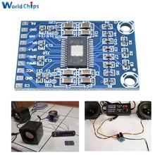 XH-M562 TPA3116D2 50W + 50W Dual canal Mini amplificador Digital amplificador clase D 50W placa amplificadora de potencia DC 12 V-24 V 2x50W