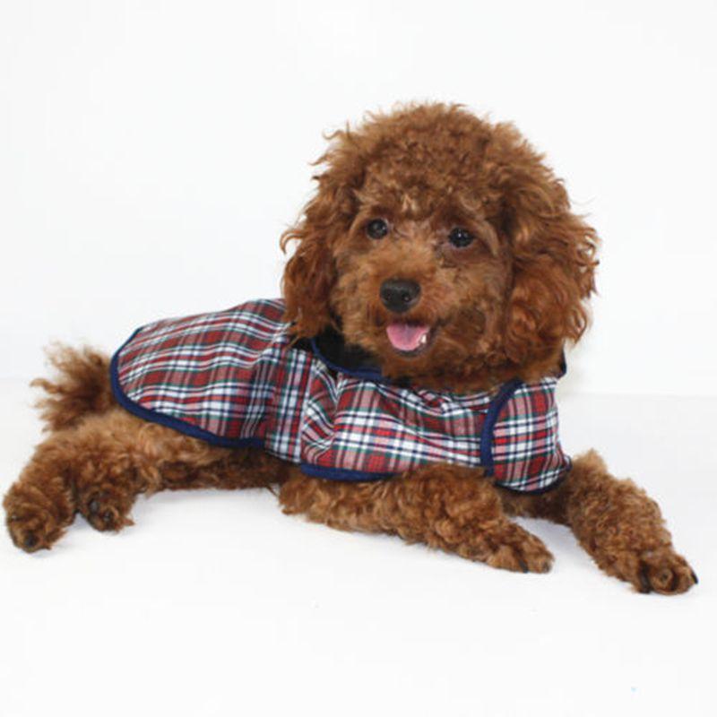 Envío Gratis, impermeable para mascotas, ropa para perros y gatos, productos Ainmal, mayoristas, 4 tamaños, diseño único de alta calidad para cachorros
