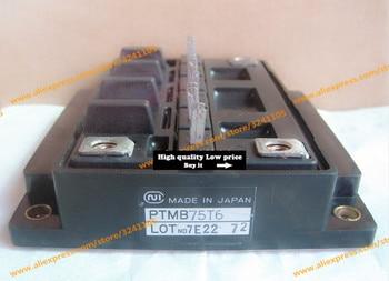 Free shipping  NEW  PTMB75T6  MODULE