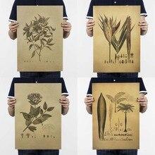 """""""Skizze Pflanzen"""" Design Diagramm Vintage Poster Retro Kraft Papier Poster Bar Cafe Innen Dekoration Malerei Movie Poster"""