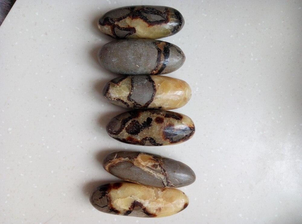 6 LONG RARE NATURAL NATURAL Dragon Septarian Fossils WAND CRYSTAL HEALING 924.9g