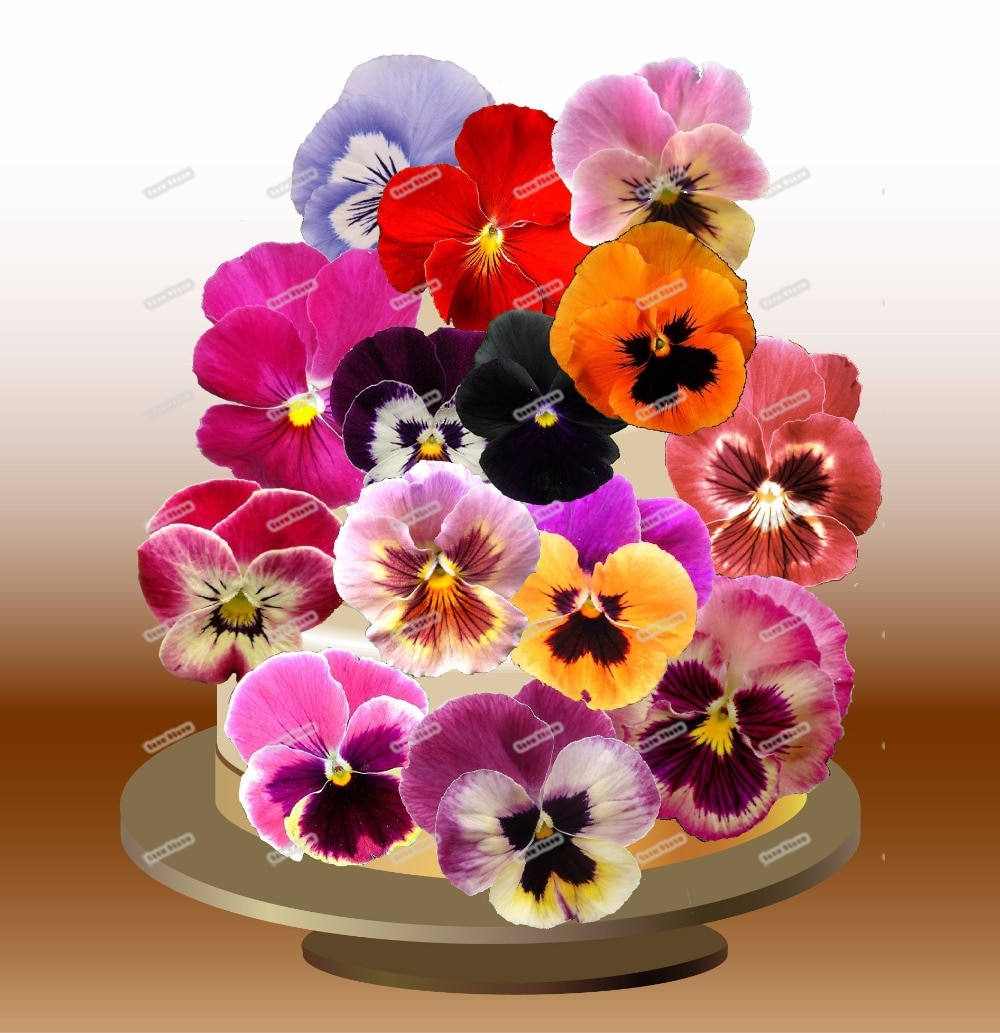 24 розовые глазки цветок съедобный торт Топпер вафли рисовая бумага чашка для торта Топпер свадебный детский душ День рождения украшение для торта