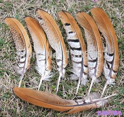 100 unids/lote 11-14cm faisan Reeves plumas de la cola a rayas al por mayor suelta Quill Natural Smudge Wand negro marrón KX78