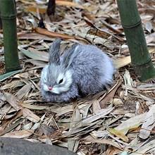 6'' 15cm Mini Realistic Cute White Plush Rabbits Fur Lifelike Animal Easter Bunny Simulation Rabbit Toy Model Birthday Gift