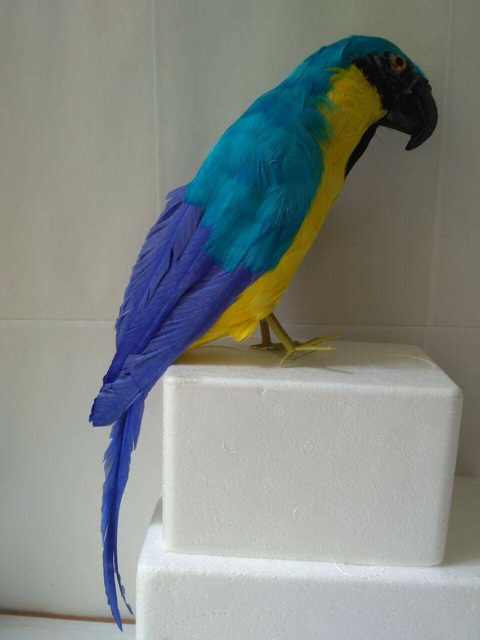 new simulation blue parrot model foam&feathers parrot bird about 40cm