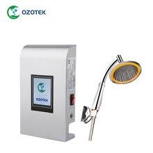 OZOTEK generator ozonu maszyna TWO002 żywności wody owoce warzywa świeże Ozonator darmowa wysyłka