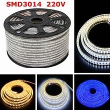 DHL Wasserdichte 220V Led Streifen 3014 SMD IP67 120 Leds/M Flexible LED Band Licht Mit 220V EU Power plug 30M 40M 50M 100M