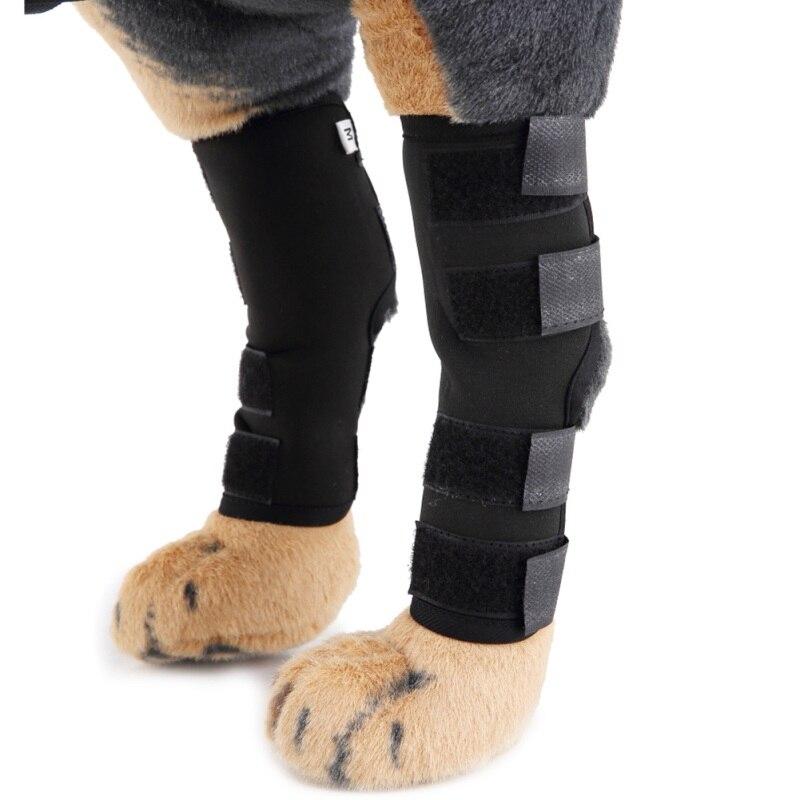 Attelle du genou pour chiens   Enveloppement des jambes arrière, Protection des articulations, bandage, plaies, heaux, prévention des blessures, bandes entailles