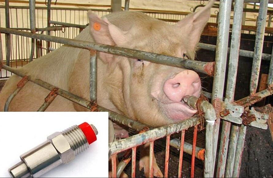 Cerdo bebedor de agua de pezón automático oveja agua cerdo bebida aves de corral
