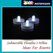 Aquarium Decoration 120pcs Factory Wholesale Fast Shipment High Quality Submersible Battery LED Floralytes