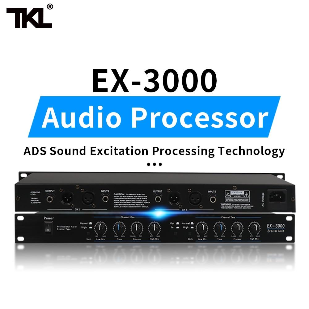 TKL 2 channels Sound Audio Exciter Processor speaker management pro audio processor protea pro stage