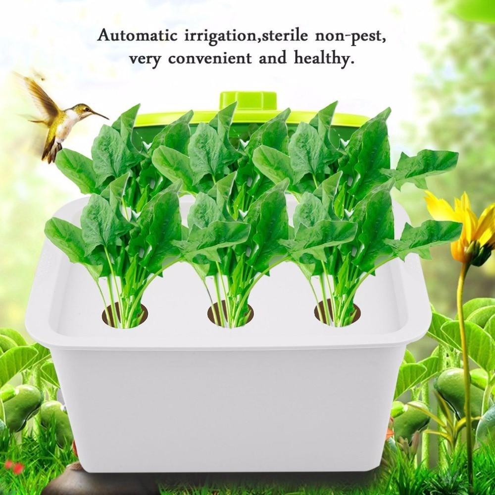 6 agujeros 110V planta sitio sistema hidropónico interior jardín gabinete caja Kit de cultivo burbuja jardín macetas vivero Macetas