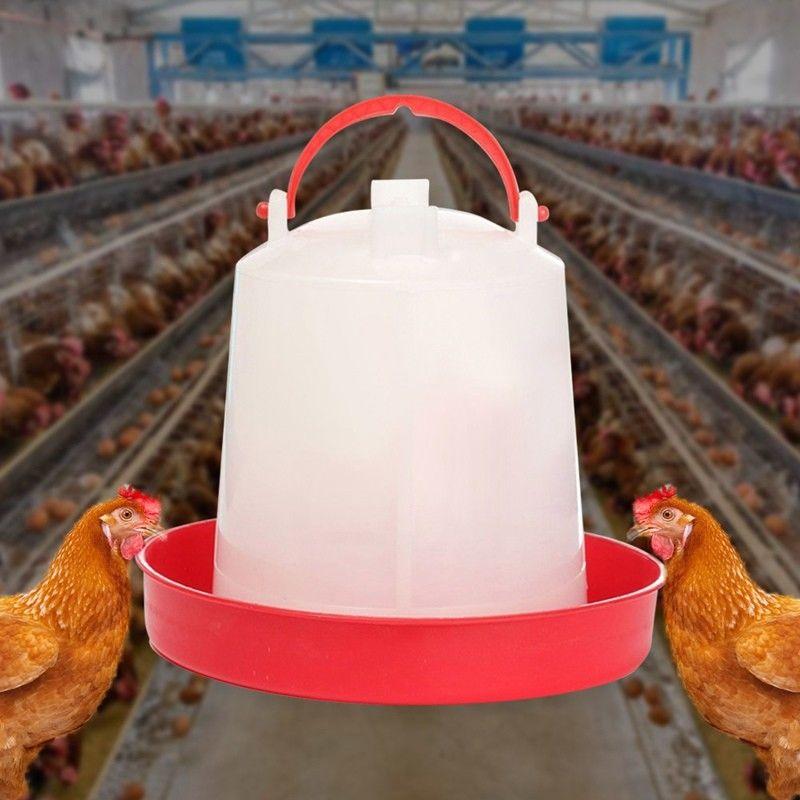 Bebedero para pollos alimentador de agua potable de pollo hervidor de codorniz hervidor de alimentación de aves de corral suministros animales de granja nuevo