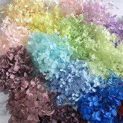3 г/лот высокое качество натуральные свежие сохраненные цветы сушеная Гортензия Цветочная головка для DIY настоящая вечная жизнь цветы материал