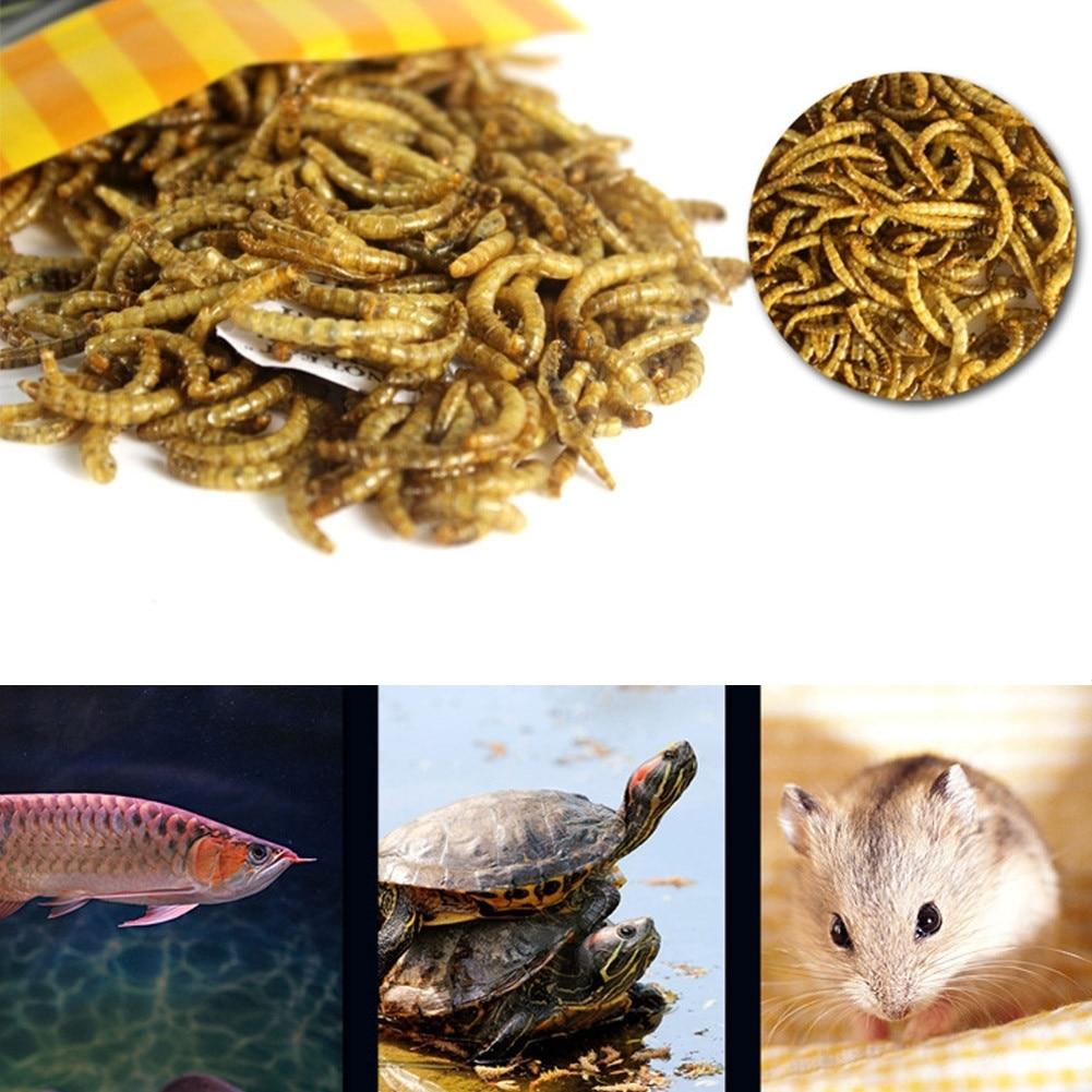 Tortuga peces alimentador comida palitos de alimentación gránulos secos de camarón pescado pan gusanos reptil acuario tortuga comida