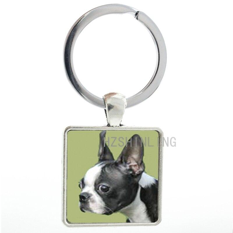 2016 venda quente do cão quadrado chaveiro boston terrier chaveiro animal foto liga de vidro masculino feminino charme chaveiro titular aa104