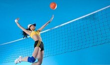 Bonne affaire Match International Standard taille officielle volley-ball filet de remplacement