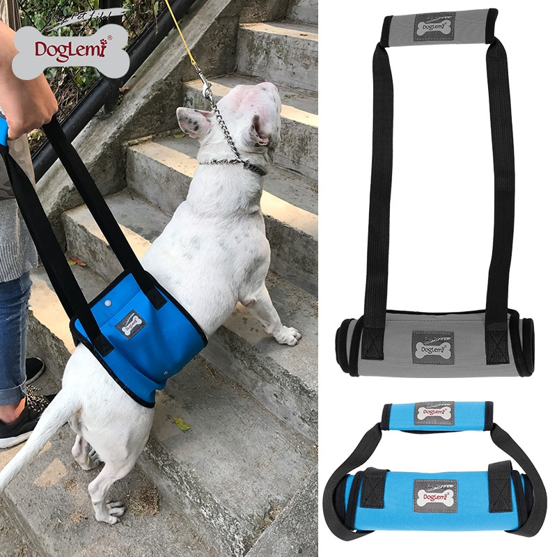DogLemi, arnés de soporte para levantar perros con mango para personas mayores o heridas, patas traseras débiles