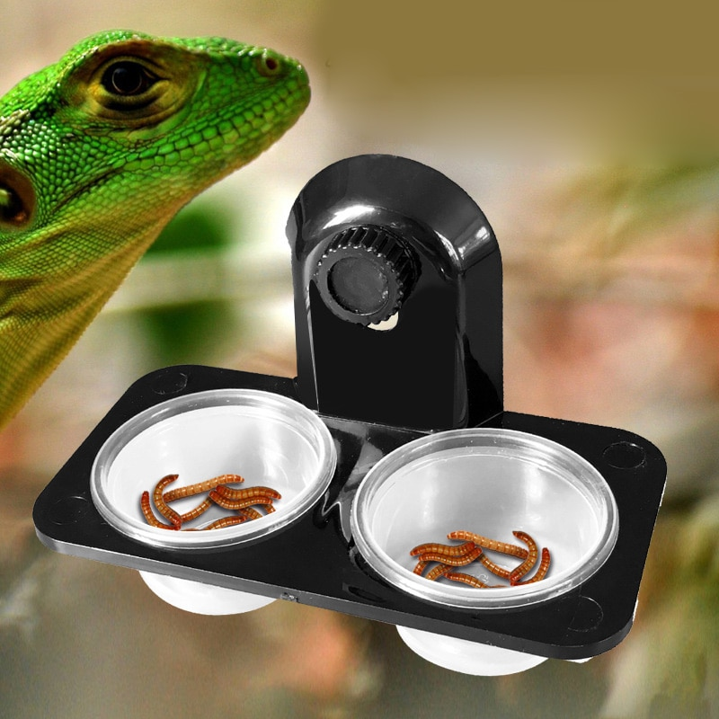 1pcs Reptile Tank Insect Spider Ants Nest Snake Gecko Food Water Feeding Bowl Terrarium Breeding Fee