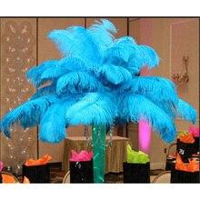 Grand pôle 100 plumes dauplate naturelle   100% pièces, 20-80CM/8-32 pouces, teint bleu lac, pour masque de fête, accessoires pour vêtements coiffure