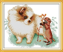 DMC-Kits de point de croix chinois   Pomeranienne et écureuil imprimés sur toile, kit de point de croix imprimé, broderie