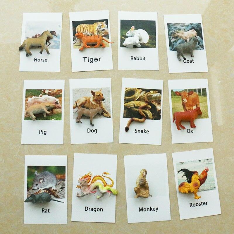 Juguetes Montessori para niños de 3 años, tarjetas del zodiaco Montessori, juguetes educativos de aprendizaje temprano para niños, regalo de cumpleaños MJ1264H
