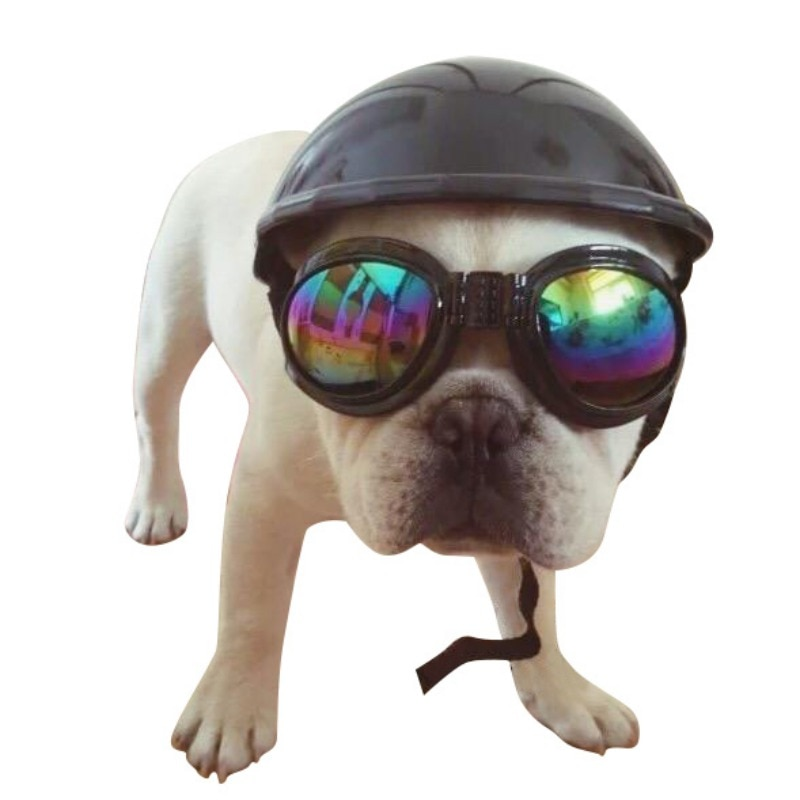 Otoño Invierno al aire libre lindo pequeño casco 2017 mascotas hermoso motociclista perro sombrero cascos Ridding Cap cachorro motocicleta protección producto