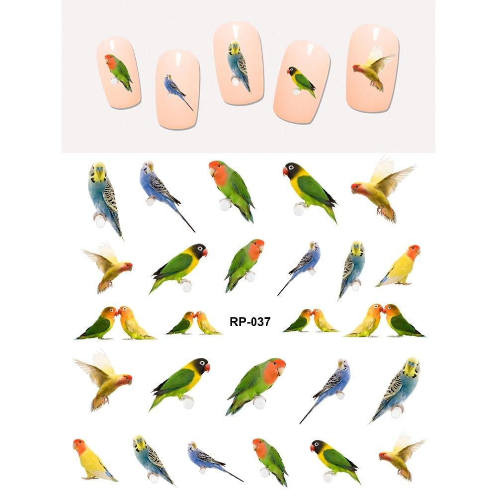 NAIL ART BEAUTY WATER DECAL SLIDER NAIL STICKER BIRD PARROT POPINJAY WOODPECKER EAGLE SWALLOW PHEASANT SWAN RP037-042