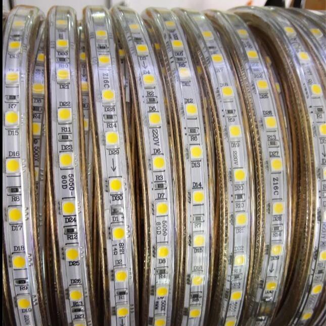 Tira de luces LED de 220V CA SMD 5050 60leds/m IP67, cinta LED Flexible impermeable de 1M/2M/3M/4M/5M/6M/7M/8M/9M/10M/15M/20 + enchufe de alimentación