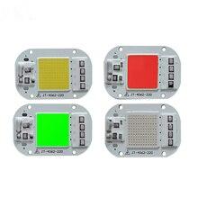 Kleur High Power Led Matrix Voor Projectoren Diy Schijnwerper Cob Led Spotlight Outdoor Chip Lamp Uitziende Voor Tijdens Voor een Beetje