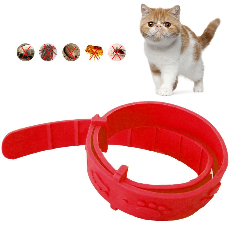 Gato Collar antipulgas contra TIC rápido matar quitar para repeler Collar de goma regalo nuevo