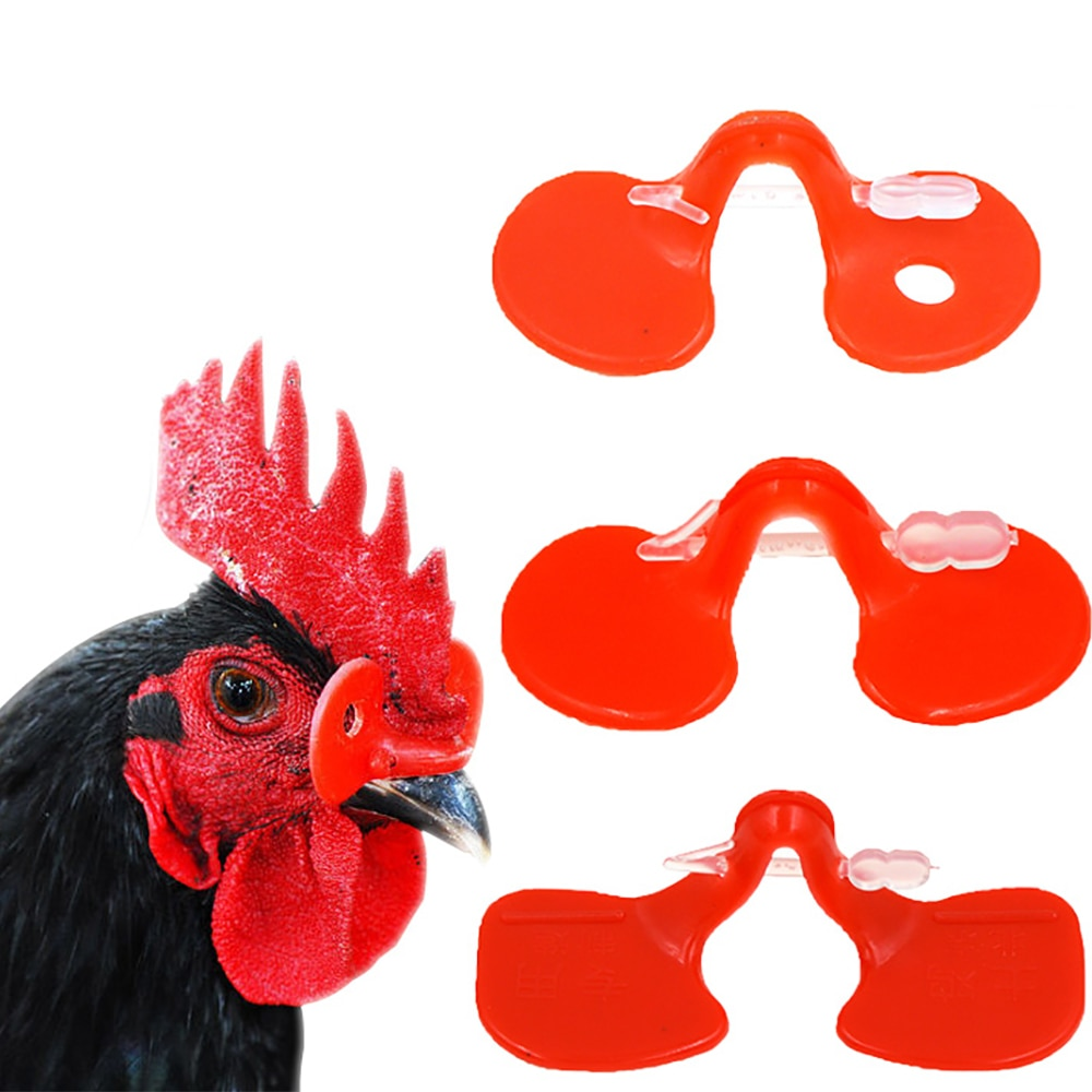 Con pernos ojos de pollo gafas faisán gafas Anti-picoteo lucha aves de corral herramientas de plástico rojo