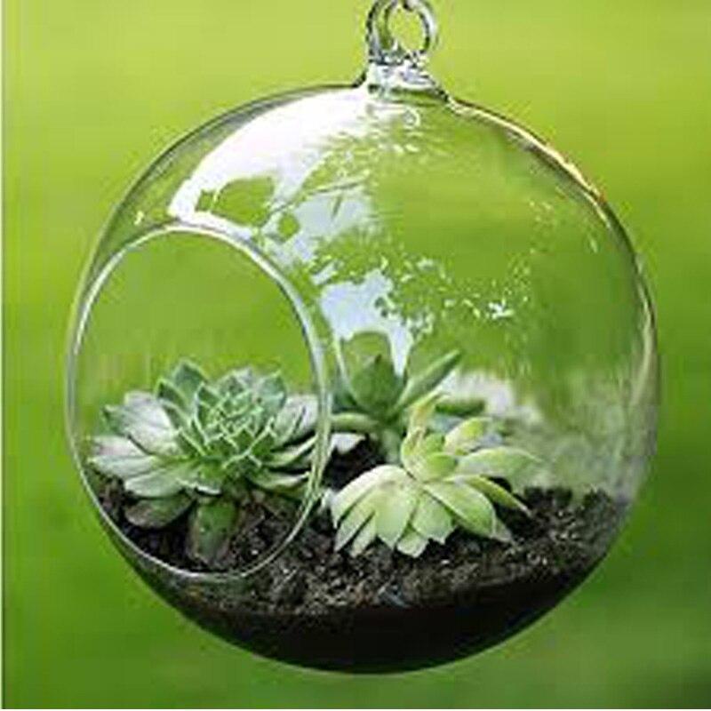 Terrario bola globo forma transparente colgante florero FLORES PLANTAS DE terrario contenedor Micro paisaje DIY boda decoración del hogar